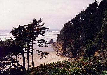 Oregon coast from the cabin