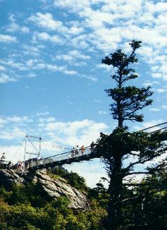 View of swinging bridge of Grandfather Mountain from below